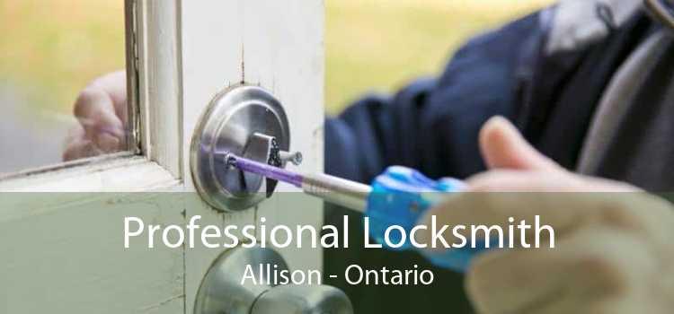 Professional Locksmith Allison - Ontario