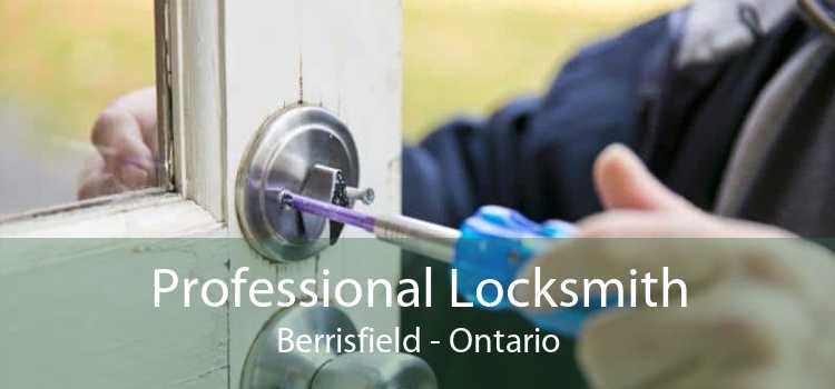Professional Locksmith Berrisfield - Ontario