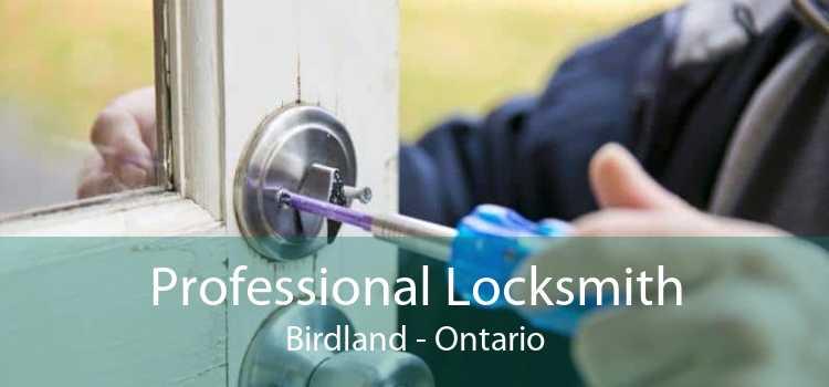 Professional Locksmith Birdland - Ontario