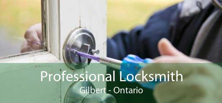 Professional Locksmith Gilbert - Ontario