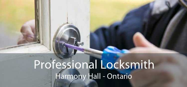 Professional Locksmith Harmony Hall - Ontario