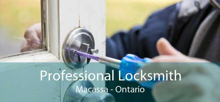 Professional Locksmith Macassa - Ontario