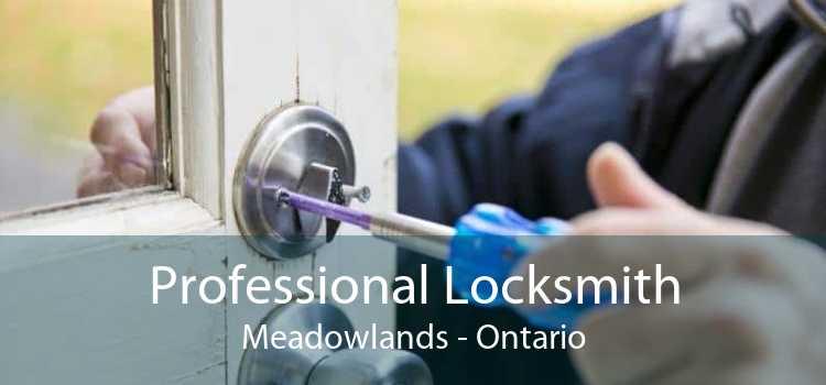 Professional Locksmith Meadowlands - Ontario