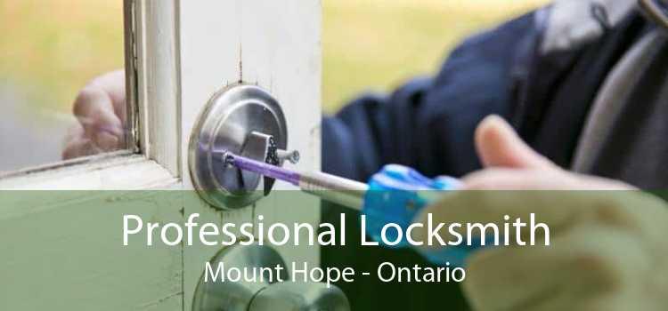 Professional Locksmith Mount Hope - Ontario