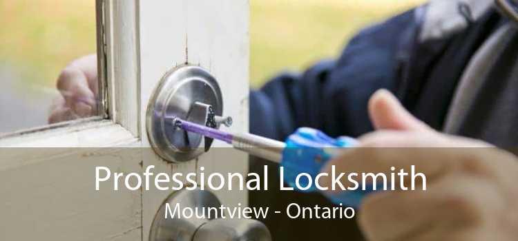 Professional Locksmith Mountview - Ontario