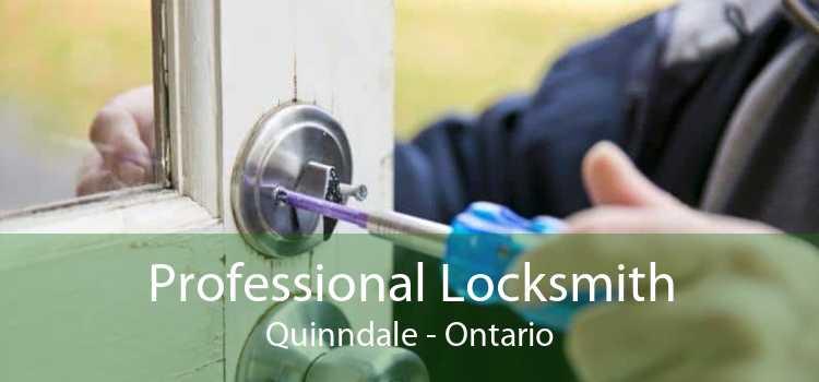 Professional Locksmith Quinndale - Ontario