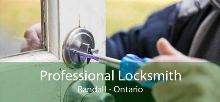 Professional Locksmith Randall - Ontario